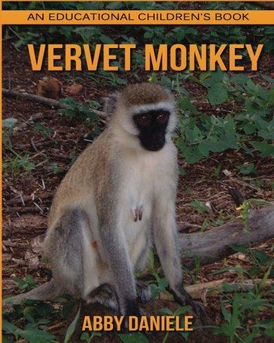 Vervet Monkey! An Educational Children's Book about Vervet Monkey with Fun Facts & Photos