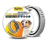Best Dog Flea Collars - RYDOR Dogs Flea Tick Collar - Natural Flea Review
