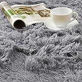 ACTCUT Super Soft Indoor Modern Shag Fur Area Rugs