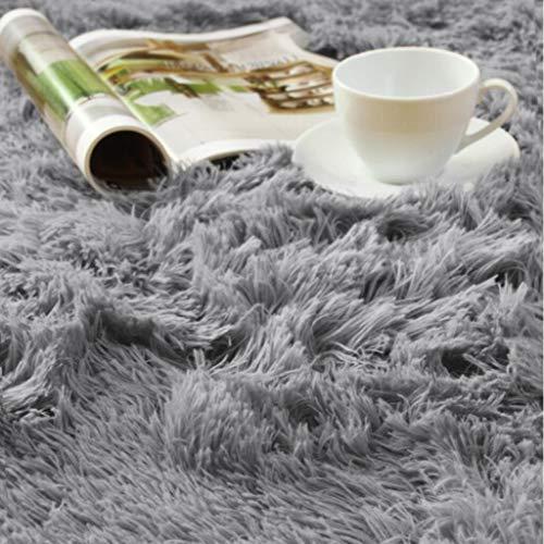 ACTCUT Super Soft Indoor Modern Shag Area Silky Smooth Fur