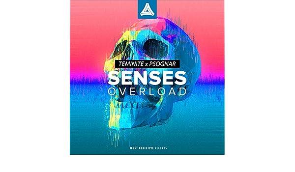 Senses Overload by Teminite PsoGnar on Amazon Music - Amazon com