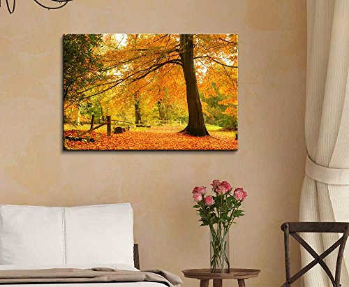 Beautiful Yellow Autumn Fall Forest Scene with Fallen Leaves