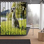 Alaskan Malamute Bath Curtains Shower,Klee Kai Puppy Sitting on Grass Looking Up Friendly Young Cute Animal DShower Curtainsrative for Home,59''W x 71''H 8