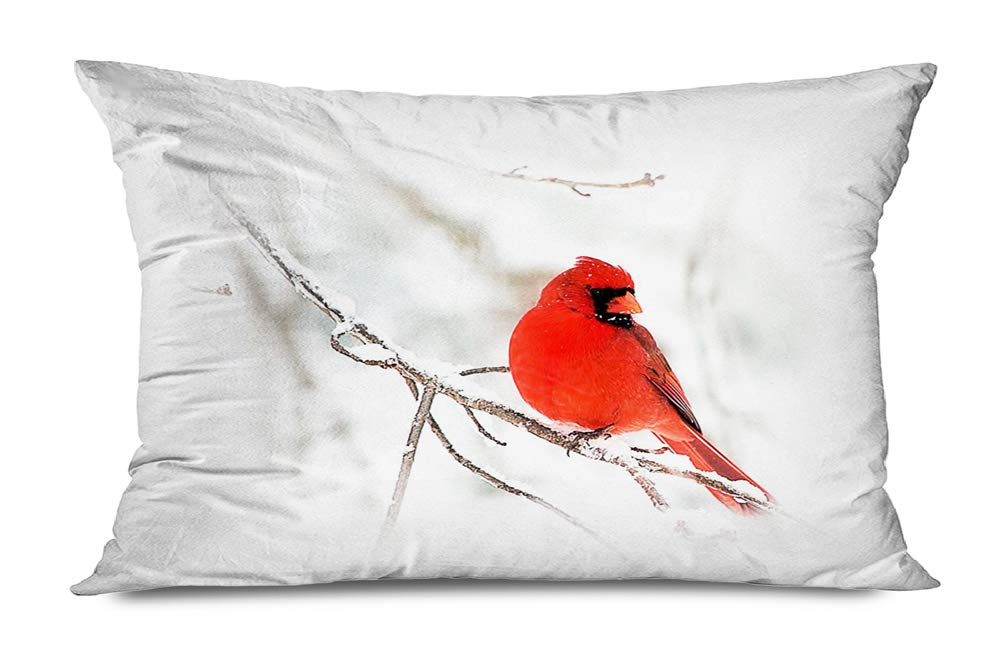 Buy Onete Winter Cardinals Pillow Covers White Snowflakes Red Cardinal Bird Decorative Farmhouse Square Throw Pillow Covers Cushion Case Pillowcase Home Decor Sofa Couch Bedroom Car 20 X 36 Inch White Red