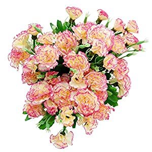 BEFINR Artificial Carnation Pink Silk Petals Fake Flowers Forever Plants for Gifts Home Party Wedding Office Garden Art Decoration 4PCS(Pink) 20