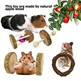 BWOGUE Hamster Chew Toys Rat Chinchilla Guinea Pig