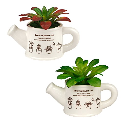 MX Artificial Succulent Plants Fake Plants White Ceramic Watering Pot Tabletop Artificial Potted Plant Home Garden Office Floor Restaurant Wedding Decoration,1 Set of 2 by MX