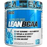 Evlution Nutrition LeanBCAA Powder, 30 Servings (9.4 Oz) (Blue Raz)