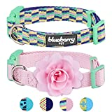 Blueberry Pet Pack of 2 Multiple Designs Mix and Match Pretty Picks Dog Collar for Puppies & Small Dogs with Detachable Pink Flower Accessory, S, Neck 12''-16''