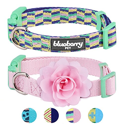 Blueberry Pet Pack of 2 Multiple Designs Mix and Match Pretty Picks Dog Collar for Puppies & Small Dogs with Detachable Pink Flower Accessory, S, Neck 12