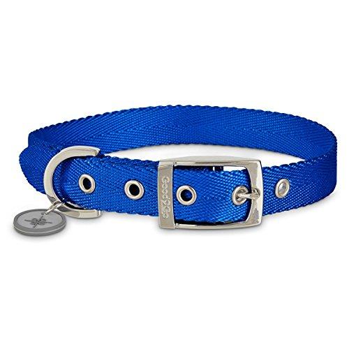 (Good2Go Adjustable Blue Nylon Buckle Dog Collar, Large/X-Large)