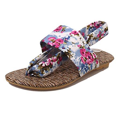 Deesee (tm) Damessandalen Sandalen Schoenen Peep-toe Lage Schoenen Romeinse Sandalen Dames Flip Flops Blauw