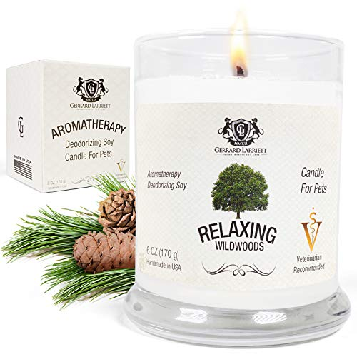 - Wildwoods (Cedarwood & Vanilla) Aromatherapy Deodorizing Soy Candle for Pets, Candles Scented, Pet Odor Eliminator & Animal Lover Gift - 6 OZ (170 g)