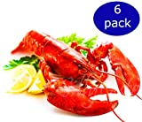 Live Lobsters from Maine, Alive and Kicking, 1.0~1.2 lb each, Pack of 6,, Overnight Delivered to Your Door