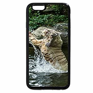 iPhone 6S / iPhone 6 Case (Black) Tiger in the snow
