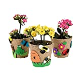 Garden Pot Craft Kit 12 Kits
