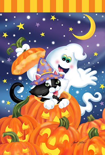 Toland Home Garden Witch Kitty 28 x 40 Inch Decorative Colorful Halloween Jack-o-Lantern Pumpkin Ghost Cat House Flag]()