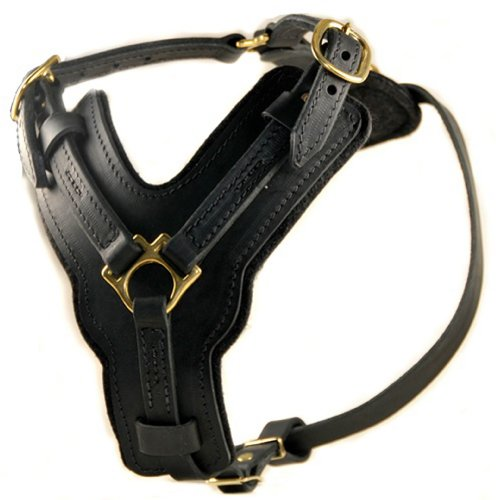 Dean and Tyler The Victory Solid Brass Hardware Dog Harness, Black, Medium - Fits Girth Size 25-Inch to 36-Inch