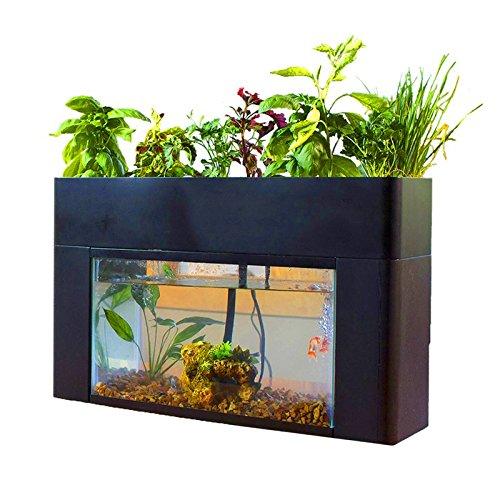 さかなで野菜を育てる 話題の さかな畑 【 アクアスプラウト 】 家庭用 アクアポニックス キットの商品画像