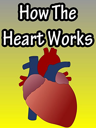 - How The Heart Works