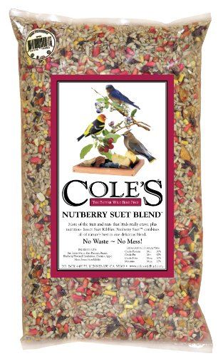 Cole's NB10 10 Pound Nutberry Suet Blend (Bird Food Suet compare prices)