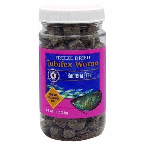 San Francisco Bay Brand ASF71510 Freeze Dried Tubifex Worms for Freshwater Fish, 28gm