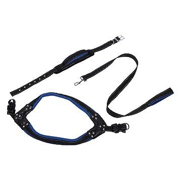Zouminy Pet Nylon Leash Collar Cuerda Arnés en Forma de V para ...