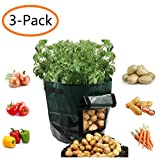 Potato Grow Bags 7 Gallon Garden Vegetables Planter Bags with Handles and Access Flap for Planting Potato Carrot Onion Taro Radish Peanut,3-Pack