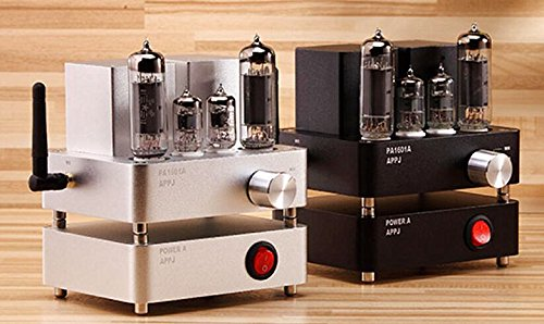 APPJ Mini Smart WiFi Vacuum Tube HiFi Hi-end Amplifier PA1601A with USB SD Card Network radio Compatible with Samsung iPhone Cellphone 6PJ1 6P14 EL84