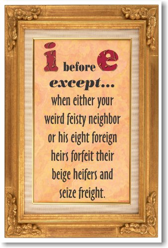 I Before E Except... - NEW Humorous Poster