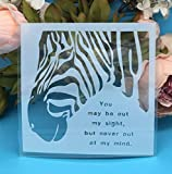 zebra stencils for painting walls - Ochoos 15cm Zebra DIY Craft Layering Stencils Wall Painting Scrapbooking Stamping Embossing Album Paper Card Template F5321