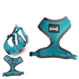 Breathable Pet Puppy Dog Walking Collar Chest Strap Harness (Turquoise, S)