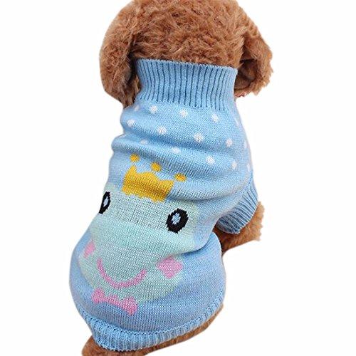 Cane gatto cartone animato rana coniglio maglione collo
