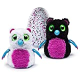 HATCHIMALS BEARAKEET INTERACTIVE TALKING HATCHING EGG by Spin Master