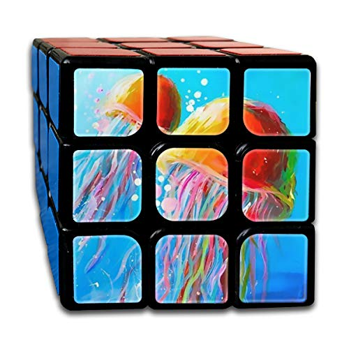 Acrylic Painting Ideas Rubik Cube Super-Durable with Vivid Colors 5.5x5.5 Cube Easy Turning and Smooth Play Magic Cube Puzzle -