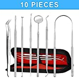 Dental Tools, Habor 10 pieces with Dental Mirror, Tongue Scraper, Sharp Needles, Tweezers, Portable Case, Health and Hygiene Stainless Steel Dental Kit Both at Home and Dental Clinic.