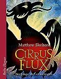Cirrus Flux: Der Junge, den es nicht gab (Reihe Hanser)