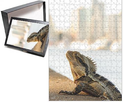 photo-jigsaw-puzzle-of-city-lizard