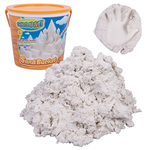 Sands Alive Bucket - Reusable and Moldable Play Sand for Building Fun - Includes 3 Pounds of Sand
