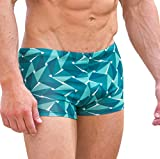 Cooltan Men's Sun Through Hipster Swim Shorts Emerald (Large)