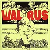 Walrus by Walrus