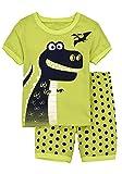 Babypajama Little Boys' Dinosaur Short sleeve Pajamas 2 Piece Clothing Sets