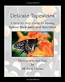 Delicate Tapestries, Jill Ocone, 1463661576