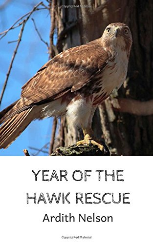 Download Year of the Hawk Rescue pdf