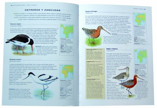 Aves De España Y Del Mundo Enciclopedia Ilustrada Spanish Edition Alderton David Barrett Peter 9788499281889 Books