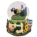 Think Crate Labrador Puppies playing in garden flowers glass musical snow globe Tune: Beautiful Dreamer