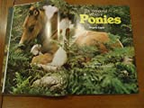 img - for The wonderful world of ponies book / textbook / text book