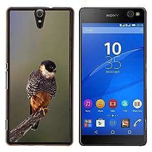 EJOOY---Cubierta de la caja de protección para la piel dura ** Sony Xperia C5 Ultra ** --bebé naturaleza de primavera pájaro ramificación borrosa