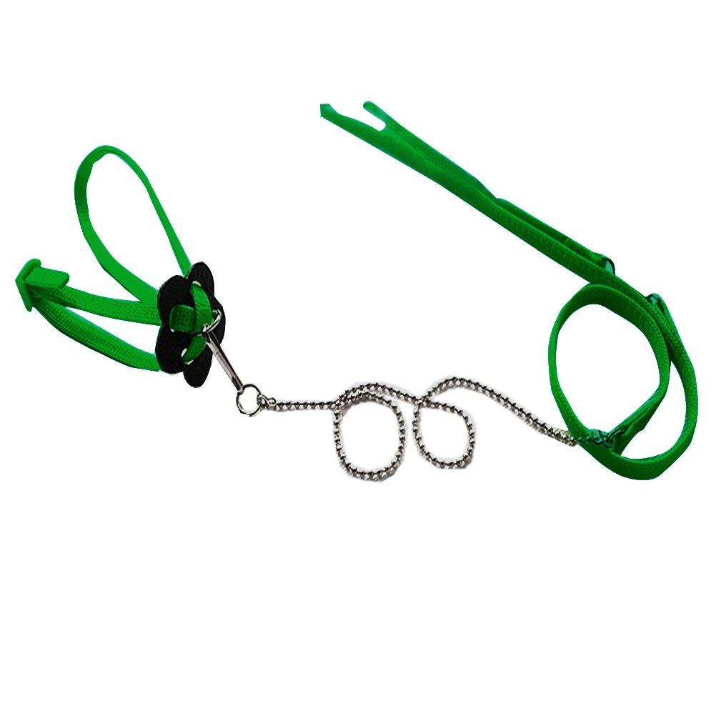 Vert ueetek 1.2/m r/églable Laisse Harnais pour l/ézard reptile Outdoor Walk