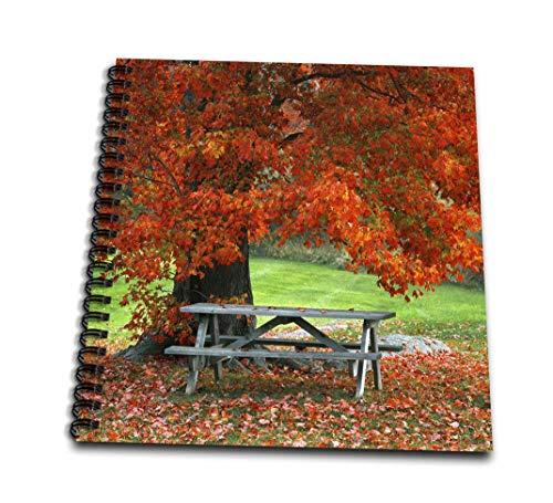 3dRose db 190601_ 3uso, nueva york, West bajo de banco de parque en otoño de arce Mini bloc de notas, 4x 4'
